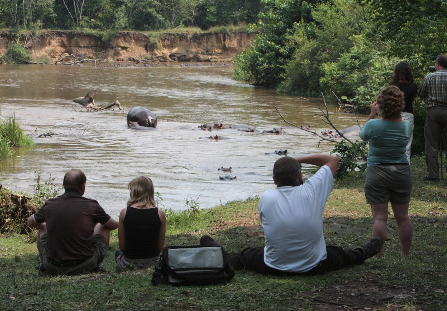 Spotting hippo on the Ishasha River, Queen Elizabeth NPUganda