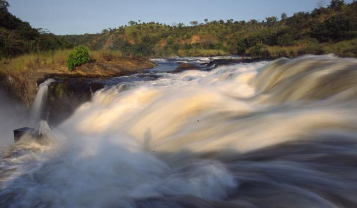 Murchison Falls National Park ( Uganda)