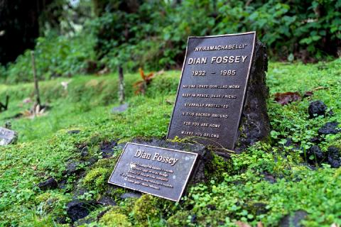 Photo of the Dian Fossey Grave (Volcanoes National Park Rwanda)